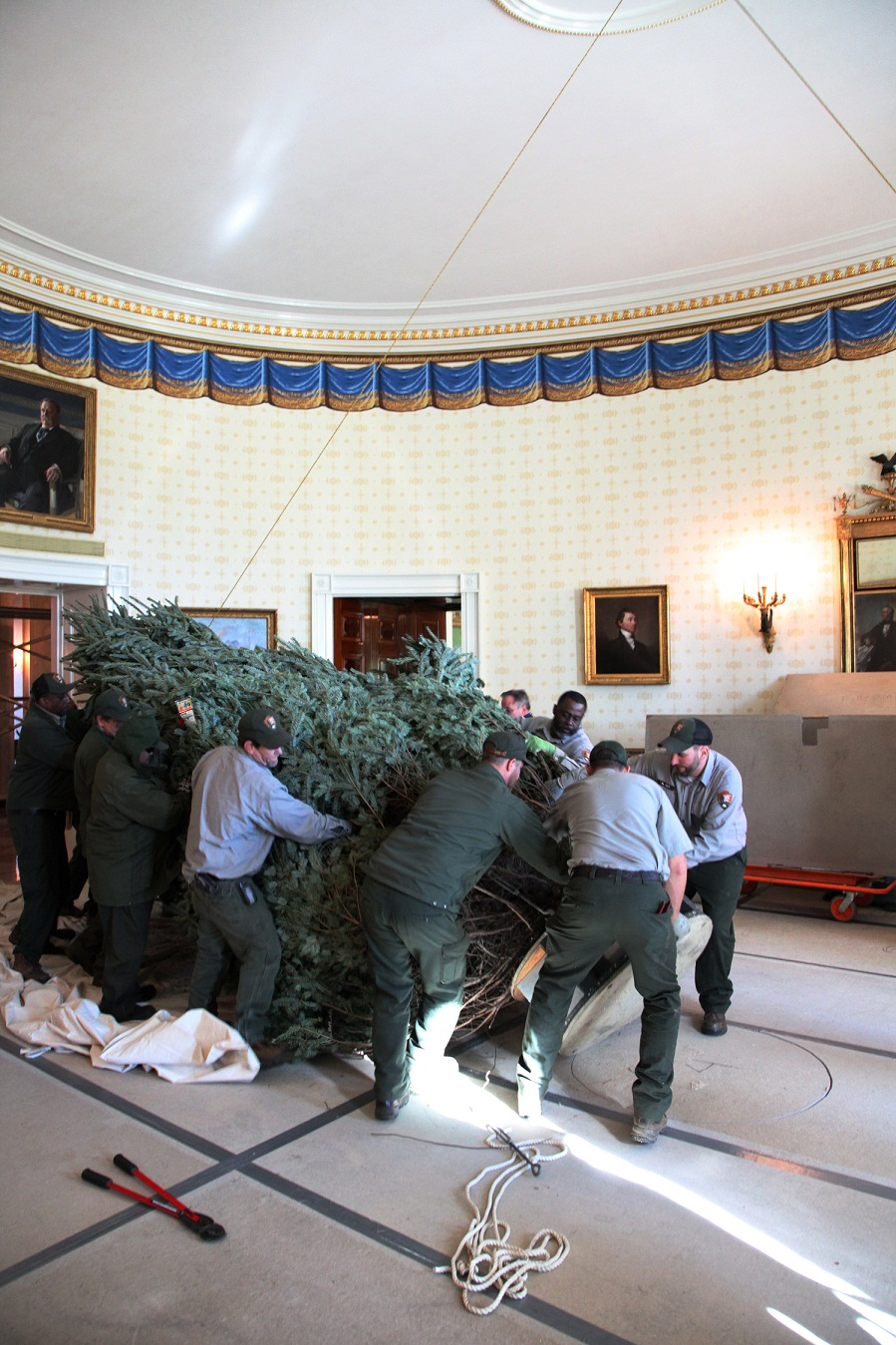 12/23/12: Blue Room Tree Arrival